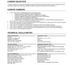 resume objective statement for business management template payroll resume with no exle of objective for service