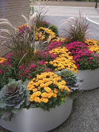 fabulous fall flower containers flower containers flower and