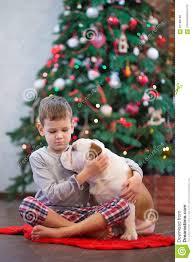 best friends handsome blond boy and puppy red white english