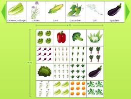 Designing A Backyard 173 Best Vegetable Garden Design Tips Diy Images On Pinterest
