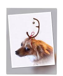max the dog faux deer antler headband grinch christmas halloween
