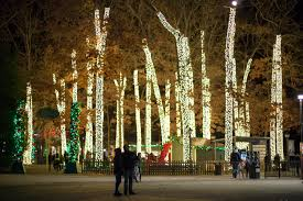 Is Six Flags Open On Christmas Holiday In The Park Six Flags Great Adventure Coffee With Summer
