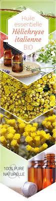 immortelle d italie cuisine huile essentielle bio helichryse italienne