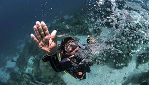 scuba diving courses dubai atlantis the palm