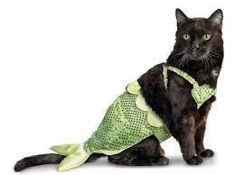 Cat Halloween Costumes Girls 25 Baby Mermaid Costumes Ideas Baby Mermaid