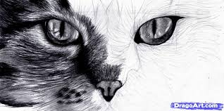 10 how to draw cat eyes