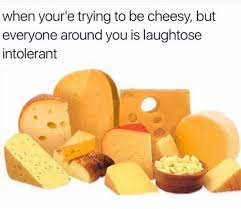 Cheesy Memes - the best cheesy memes memedroid
