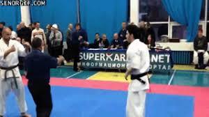 imagenes gif karate señor gif karate great gifs funny gifs cheezburger
