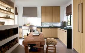 houzz kitchen cabinets decorating ideas a1houston com