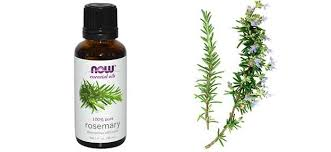 essential oils for hair growth and thickness rosemary oil for hair growth benefits how to use reviews recipe