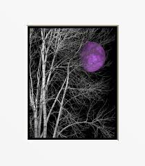 Celestial Home Decor by Black White Purple Wall Art Photography Tree Moon Bedroom