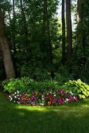 Backyard Trees For Shade - best 25 shade garden ideas on pinterest shade landscaping