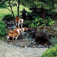 Dog Backyard Playground by Best 25 Dog Friendly Backyard Ideas On Pinterest Build A Dog