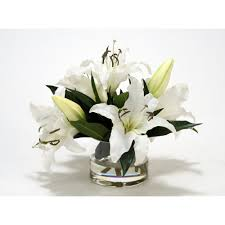 casablanca lilies white casablanca lilies in clear low glass cylinder