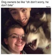 Holy Crap Meme - holy crap meme by shadowninja z memedroid
