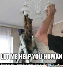 Help Me Help You Meme - let me help you human by wonderfulblack meme center