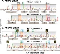 novel domain architectures and functional determinants in atypical