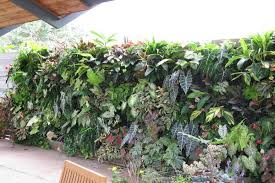 vertical gardens the good the bad the ugly csmonitor com