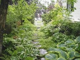 Shady Backyard Landscaping Ideas Boggy Shady Side Yard Houzz