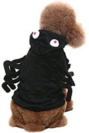 Spider Dog Halloween Costume Amazon Tarantula Fuzzy Spider Dog Halloween Costume