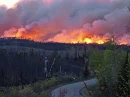 on gunflint trail memories of u0027devil u0027s fire u0027 still burn