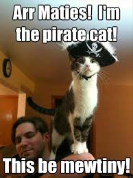 Pirate Meme - national days funny food and forgotten days of the year