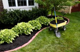 easy landscaping ideas for beginners mybktouch landscape within
