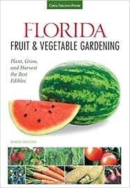 edibles fruits florida fruit vegetable gardening plant grow and harvest the
