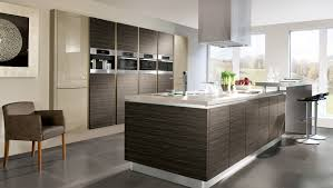 Contemporary Kitchen Cabinets Modern Contemporary Kitchens Mesmerizing Contemporary Kitchens