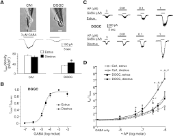estrous cycle regulation of extrasynaptic δ containing gabaa