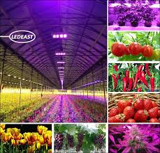 Full Spectrum Led Grow Lights Alibaba Manufacturer Directory Suppliers Manufacturers