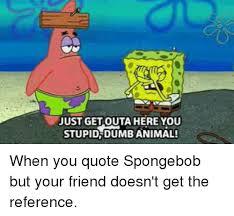 Stupid Animal Memes - just get outa here you stupid dumb animal dumb meme on