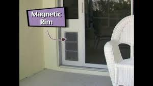Patio Door Cat Flap by Patio Pacific Pet Doors For Sliding Glass Doors Youtube