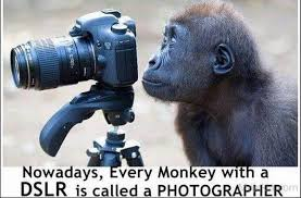 Photographer Meme - elan vital media if a photographer was any other profession