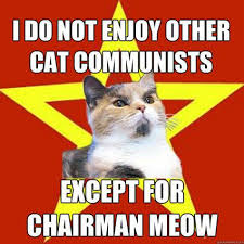 I Can Has Cheezburger Meme - 15 best cat memes ever