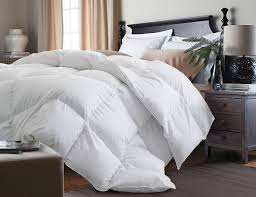 Home Design Down Alternative Comforter Review by Alwyn Home Down Alternative Comforter U0026 Reviews Wayfair