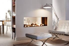 Natural Gas Fireplaces Direct Vent by Modern Gas U0026 Wood Fireplaces Contemporary Design European Home