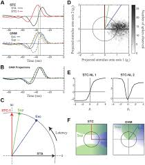 temporal precision in the visual pathway through the interplay of