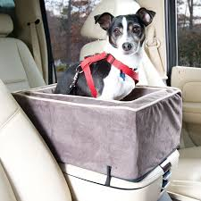 All Living Things Luxury Rat Pet Home by Snoozer Luxury Lookout Ii Pet Car Seat Small Hayneedle