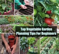 top vegetable garden planning tips for beginners diycozyworld