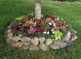 giardini rocciosi in ombra creare una aiuola sotto l albero 20 esempi bellissimi