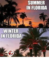 Florida Winter Meme - th id oip lglq8chys1p4wufr5vdoighai5