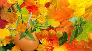 fall pumpkin wallpapers hd abundance of fall colors wallpaper download free 60021