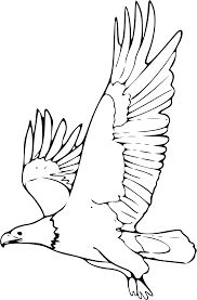 clipart coloring book bald eagle 2 remix clipartix