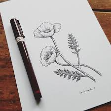 282 best drawing ideas images on pinterest drawings