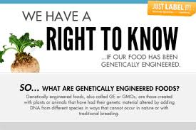 Infographic What Are Gmos One Green Planet