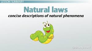 natural laws of science definition u0026 examples video u0026 lesson