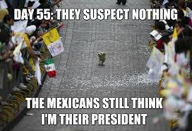 Meme Cinco De Mayo - cinco de mayo memes best collection of funny cinco de mayo pictures