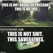 Antidepressant Meme - antidepressants aren t shit imgflip