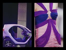 renault purple jacques cochin artist photographer